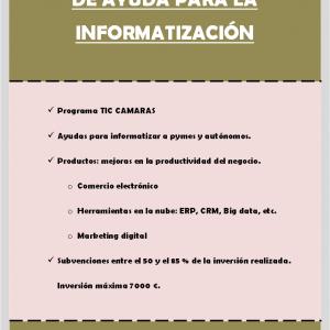 Ayuda a la informatización